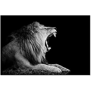cb0390ee754de Amazon.com: Sechars - Black and White Animal Wall Art Lion Roar in ...
