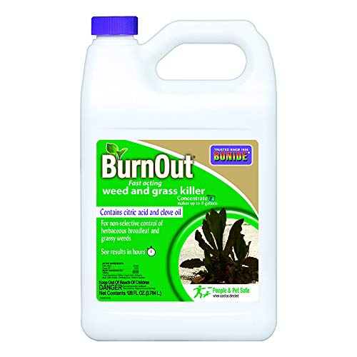 Bonide BND7465 Burnout Concentrate