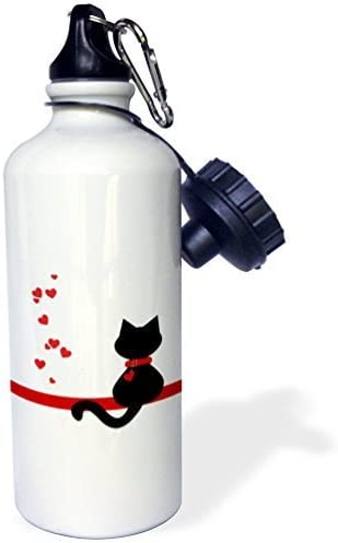 Botella de agua de Moson para niños, niñas, amantes de las mascotas, corazones rojos, negro, gatito, botella de agua de acero inoxidable para escuela, oficina, viajes, 53,3 g