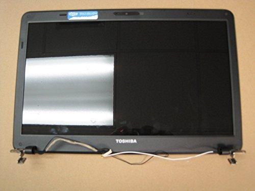 Toshiba Laptop Screen Hinge - 15.6