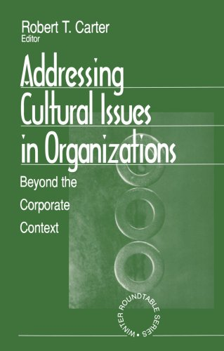 Addressing Cultural Issues in Organizations: Beyond the Corporate Context (Winter Roundtable Series (Formerly: Roundtabl
