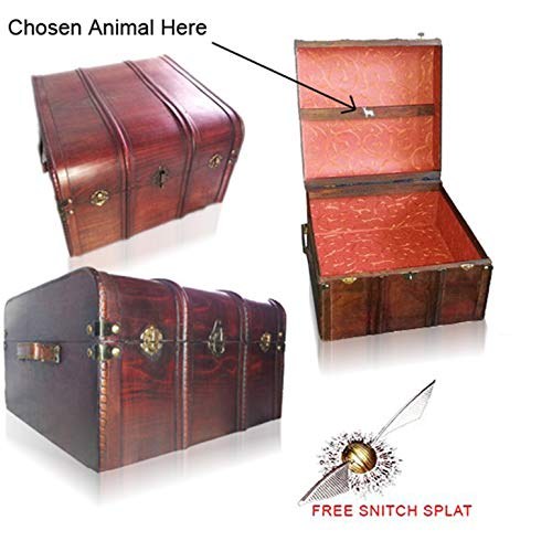 Hogwarts Harry Potter Book and DVD Trunk with Free Golden Snicth Splat]()