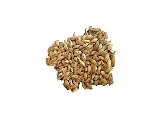 (Barley - Sprouting Barley (9 lb))