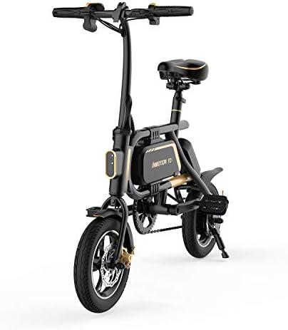 InMotion P2F Trottinette électrique Mixte Adulte, Noir/Or, 1020x1050x480mm