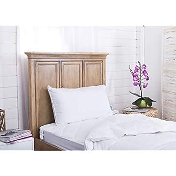 Amazon Com Westin Feather Amp Down Pillow Medium To Firm