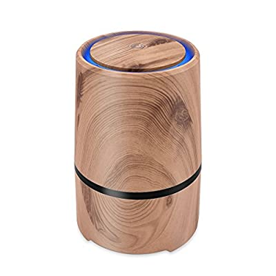 Desktop Air Cleaner with True HEPA Filter, Portable Air Purifier to Reduce Allergens Odors Dust Mold Germs Smoke for Home Room Office - SHD