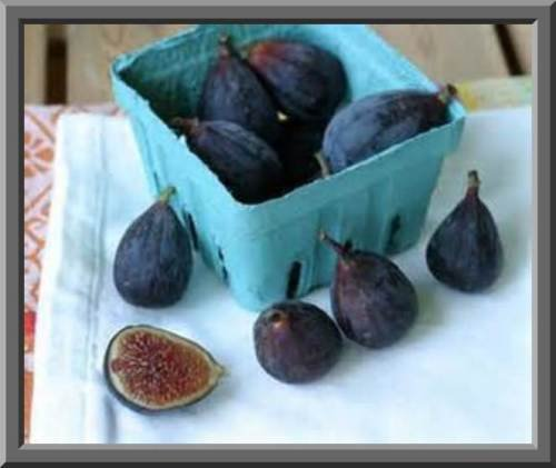 Black Mission Fig Seeds! SELF Fertile! EAT Fresh/CAN / OR Dry!