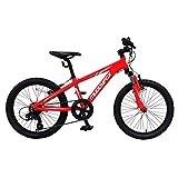Muddyfox Boys Anarchy 20 Mountain Bike Red 20 Inch