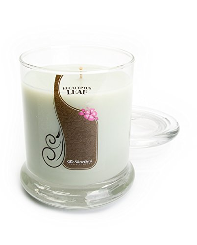 Eucalyptus Leaf Candle - 10 Oz. Highly Scented Green Jar Candle - Clean Candles Collection
