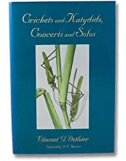 Crickets and Katydids, Concerts and Solos
