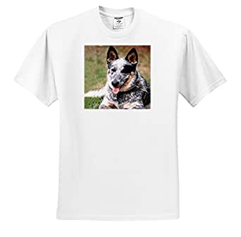 Dogs Australian Cattle - Australian Cattle Dog - T-Shirts - White Infant Lap-Shoulder Tee (24M)