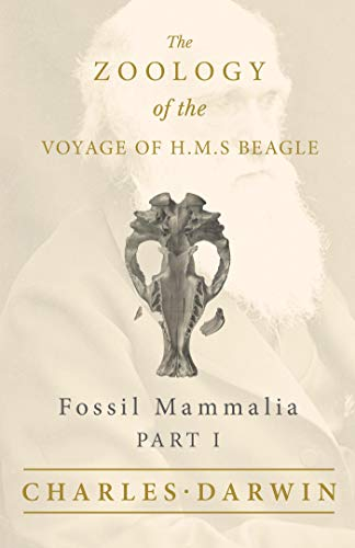 Fossil Mammalia - Part I - The Zoology of the Voyage of H.M.S Beagle: Under the Command of Captain Fitzroy - During the Years 1832 to 1836
