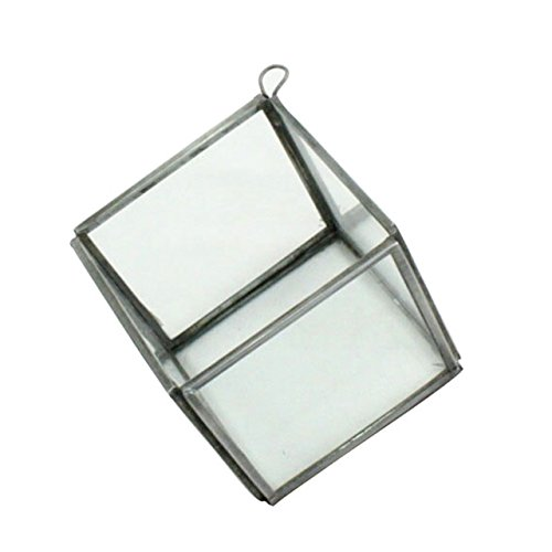 Pierre Geometric Hanging Terrarium - Cube