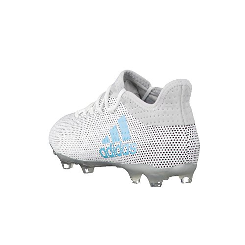adidas X 17.2 Fg, Zapatillas de Fútbol para Hombre Multicolor (Ftwr White/energy Blue /clear Grey )