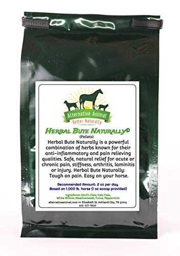 Herbal Bute Naturally- Bute Alternative for Horses (6lb) by Herbal Bute Naturally