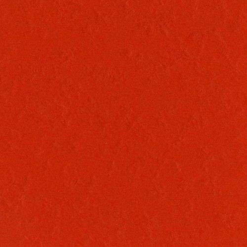 Bazzill Basics T19-3070 Prismatic Cardstock, Classic Orange, 25 Sheet Pack, 12 x 12 Inches - Lignin Free Bazzill Basics