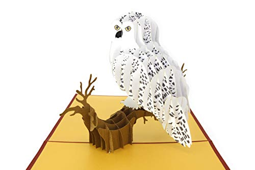 (PopLife Snowy Owl 3D Pop Up Card for All Occasions - Happy Anniversary Pop Up Graduation Card, Popup Birthday Card - Father's Day, Thank You - Wise Magical Bird - For Mom, for Dad, for Daughter, Son)