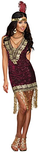 Dreamgirl Women's Plus-Size Sophisticated Lady 1920s Flapper Party Costume, Burgundy, 3X/4X