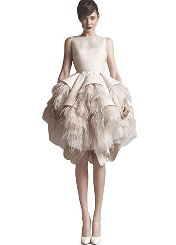 Fenghuavip Irregular Hem Champagne Ostrich Feather Bridal Wedding Dress (24)