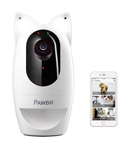 Pawbo Life Wi-Fi Pet Camera + Pawbo Flash Combo Set