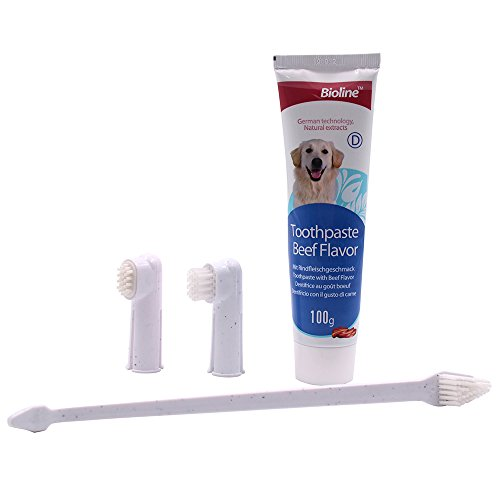 Canine Oral Care - 5