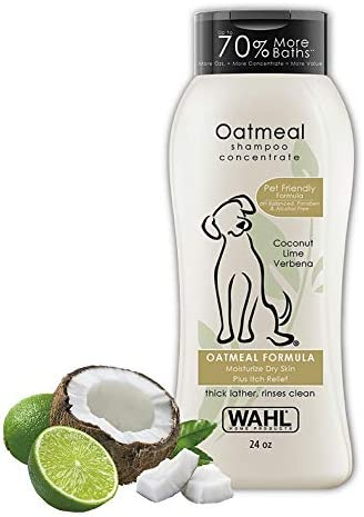 wahl-dry-skin-itch-relief-pet-shampoo