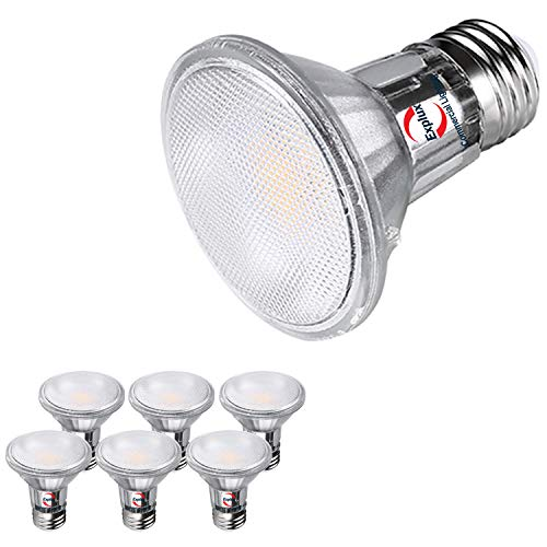 Explux Classic Full-Glass PAR20 LED Flood Light Bulbs, Dimmable, 3000K Bright White, Indoor/Outdoor, 50W Equivalent, 6-Pack