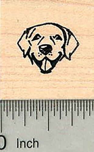 Tiny Dog Face Rubber Stamp, Labrador Retriever