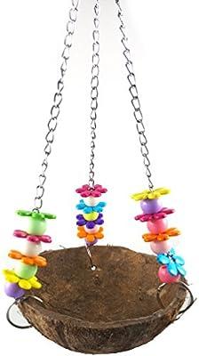 Natural coco Shell Bird Swing juguete para loro periquito ...
