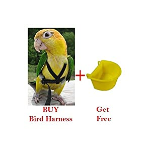 Pawzone Bird Harness with Extra Bowl for Bigger Birds (Black)