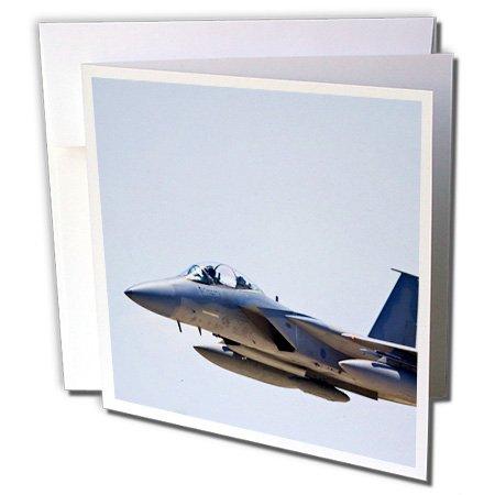 - 3dRose Mcdonnell Douglas F-15E Strike Eagle War Plane Bernard Friel Greeting Cards, 6 x 6 Inches, Set of 6 (gc_97106_1)