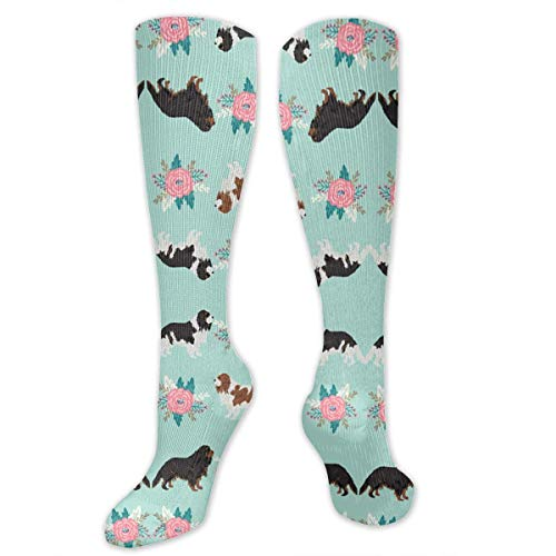 Cavalier King Charles Spaniel Dogs Cute Dog Unisex Nursing Travel Sport High Socks Cotton Dress Compression Sock 19.6 Inch