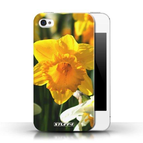 Etui / Coque pour Apple iPhone 4/4S / jonquille conception / Collection de floral Fleurs