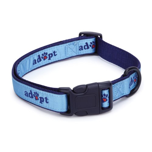 Casual Canine Nylon Adopt Dog Collar, 14-20-Inch, Blue