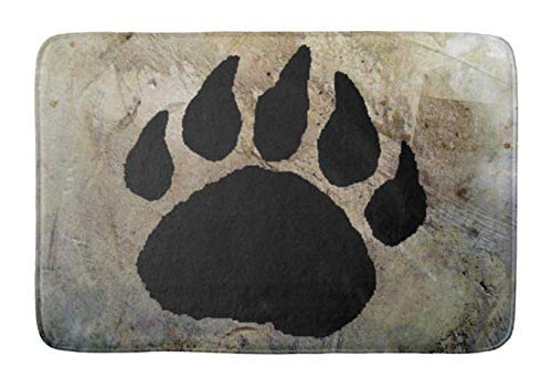 - Aomsnet Bathroom Decor Mat, Shower Rug Mat Water Absorbent Fast Drying, for Kitchen, Bedroom, Hotel, Spa Tub 24x16 Inches with Non Slip Backing Bath Mat Bear Paw Print