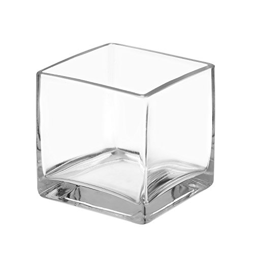 (Royal Imports Flower Glass Vase Decorative Centerpiece for Home or Wedding Clear Cube Shape, 4