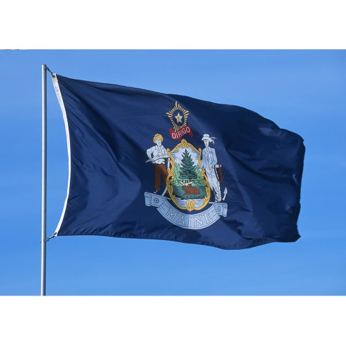 Maine State Flag (Allied Flag Outdoor Nylon State Flag, Maine, 2-Foot by)