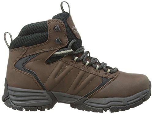Berghaus EXPEDITOR AQ RIDG TECH BOOT AF BRN/LTGRN - botas de senderismo de cuero mujer marrón - Braun (CHOCOLATE BROWN/SAGE)