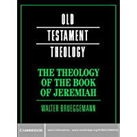 The Theology of the Book of Jeremiah (Old Testament Theology) (English Edition)
