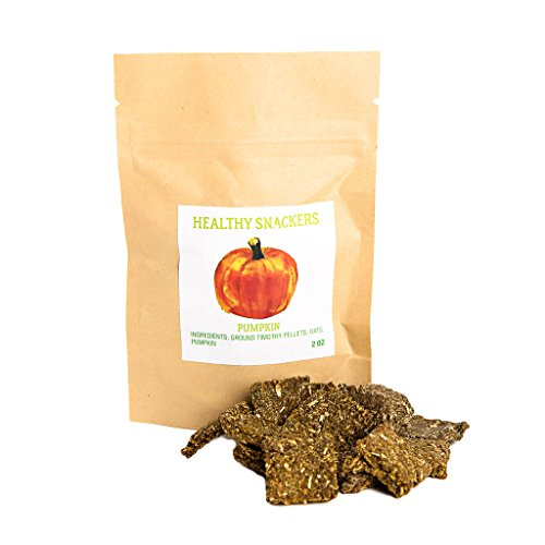 Image of Small Pet Select Healthy Snackers - Pumpkin