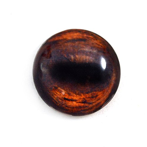25mm Single Brown Horse Glass Eye for Taxidermy Sculptures or Jewelry Making Crafts