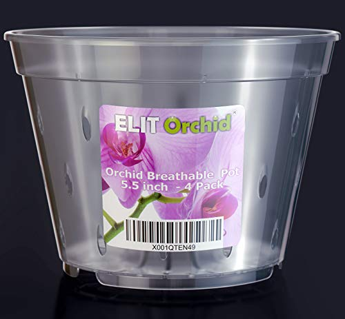 Orchid Pots with Holes Cymbidium Phalaenopsis Orchid Pot Indoor Clear Plastic Vanda Plant Pots Set 4 Pack (5.5 inch)