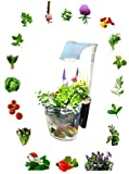 Kingro 5 in 1 Indoor Gardening Ecosystem
