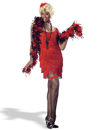 California Costumes Women's Fashion Flapper Costume,Black,Small ()
