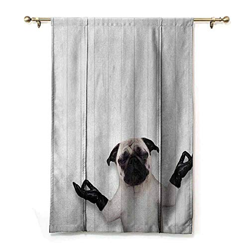 DILITECK Insulated Sunshade Roman Curtains Animal Meditating Funny Pug Dog with Leather Gloves on Wooden Board Spiritual World Theme Children's Bedroom Curtain Black White W27 xL64