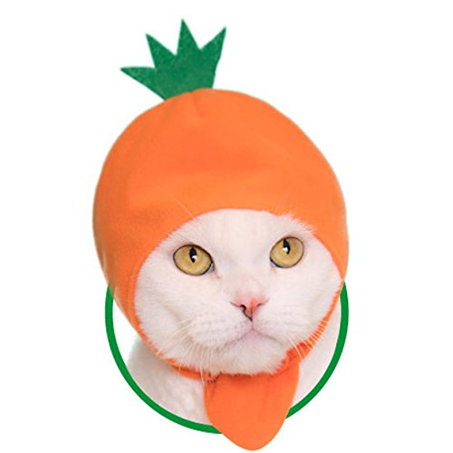Sanrio Halloween Costumes (Kawaii Kawaii Cats Costume, Vegetable Hat for Cats Neko Yasai-chan)