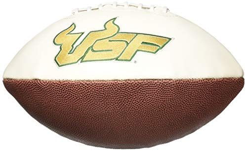 Series Florida Player (NCAA Signature Series Full Size Autograph Football South Florida Bulls)