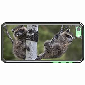iPhone 5C Black Hardshell Case raccoons tree branches sit couple Desin Images Protector Back Cover