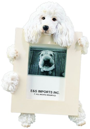 Poodle Picture Frame Holds Your Favorite 2.5 by 3.5 Inch Photo, Hand Painted Realistic Looking Poodle Stands 6 Inches Tall Holding Beautifully Crafted Frame, Unique and Special Poodle Gifts for Poodle Owners