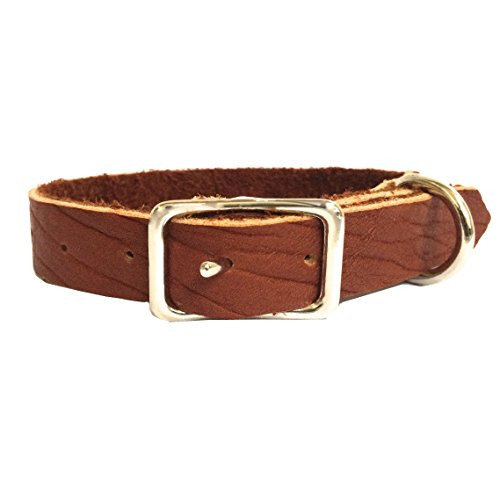 Bison Brown Handmade Dog (Bison Leather Dog Collar)
